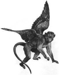 Flying-Monkey1